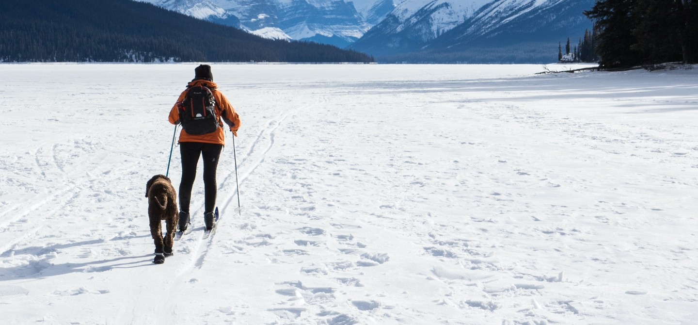 A person is cross-country skiing and a dog follows. White snow and mountain landscape surrounds them.
